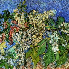 Vincent van Gogh : Blossoming Chestnut Branches, 1890.